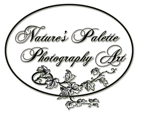 Nature's Palette Photography Art - Previewing/Ordering